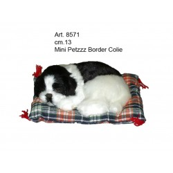 Border Colie Mini Petzzz