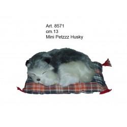 Husky Mini Petzzz